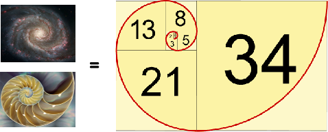 Rice Program in Mathematics: Patterns & You